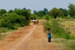 Cambodia 12