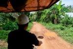 Cambodia 16
