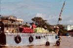 Mekong Detla12
