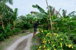Mekong Detla17