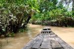 Mekong Detla21