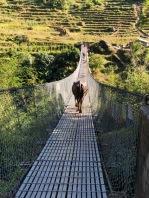 Annapurna_Day3-1