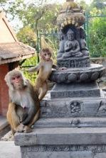 Nepal_KTM1