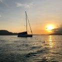 Sail31