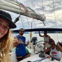 Sail42